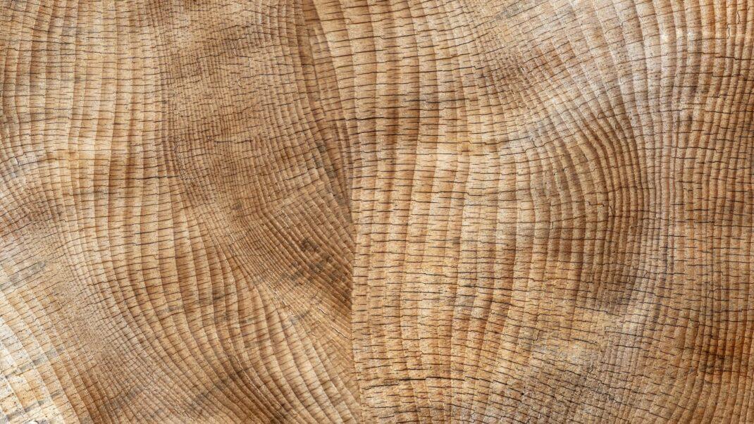 Bild Holzstruktur